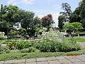 Garden of Dream Nepal.jpg