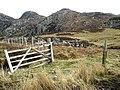 Gate and fence, Glenarigolach - geograph.org.uk - 167986.jpg