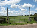 Gate into a paddock - geograph.org.uk - 1385745.jpg