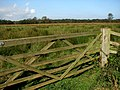 Gate into cattle pasture - geograph.org.uk - 578834.jpg