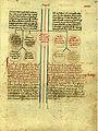 Genealogies dels comtes de Barcelona-sXV-14.jpg