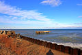 Gfp-illinois-beach-state-park-lake-shoreline-landscape.jpg