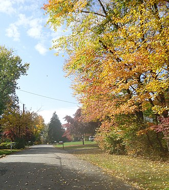 Gillette, New Jersey - Image: Gillette New Jersey road in autumn