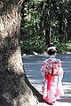 Girl Shichi-Go-San Meiji Shrine.jpg
