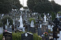 Glasnevin Cemetery, officially known as Prospect Cemetery (4163651389).jpg