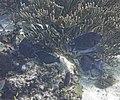 Glover's Reef 2-14 (32989758301).jpg