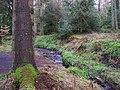 Gortin Glens Forest Park (10) - geograph.org.uk - 1712651.jpg