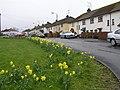 Gortrush Park, Omagh - geograph.org.uk - 754256.jpg