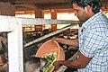 Gowtham Kumar Chichili serving calfs.jpg