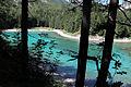 Grüner See - Bäume.jpg