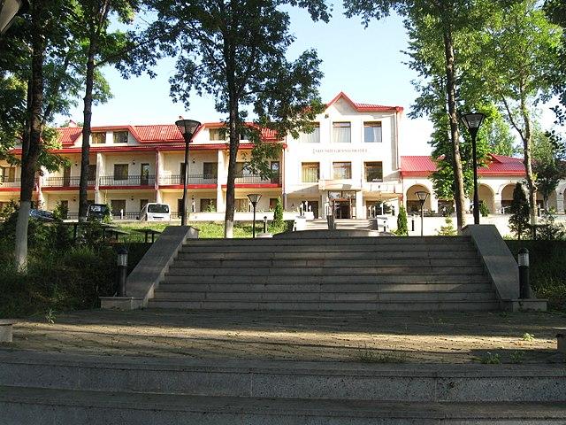 Hotel Devi Grand Moosapet Buffet Reviews