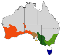 map of Australia showing multicolored area across south of the country