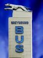 Greyhound Bus sign, South Carolina LCCN2010630289.tif