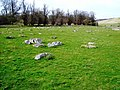 Greywethers, Ashdown Park, near Lambourn (1) - geograph.org.uk - 362085.jpg