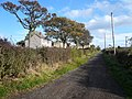 Grove Road - geograph.org.uk - 598022.jpg