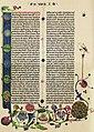 Gutenberg Bible B42 Genesis.JPG