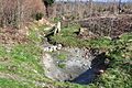 Hüllistein - Rütistrasse Renaturierung - Jonerwald 2011-03-25 14-51-46.jpg