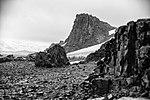 Half Moon Island, Antarctica. (24645017860).jpg
