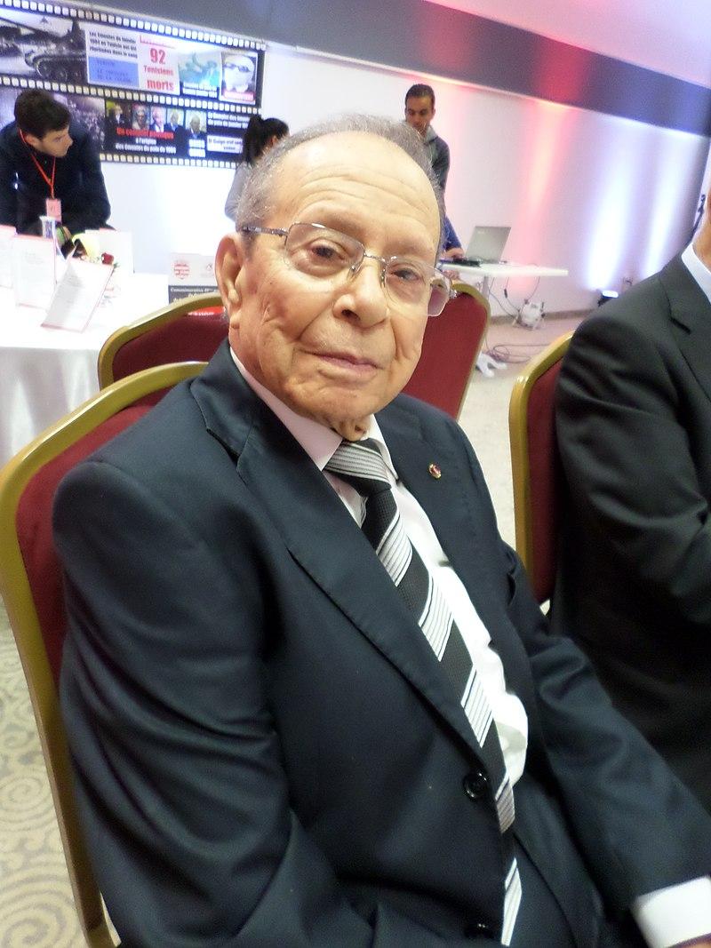 https://upload.wikimedia.org/wikipedia/commons/thumb/5/56/Hamed_karoui.jpg/800px-Hamed_karoui