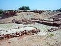 Harappa Archeology 3.jpg