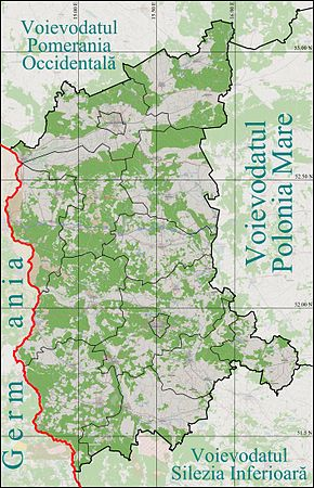 Sulęcin is located in Voievodatul Lubusz