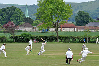 South Harting - A game at Harting Cricket Club in 2010
