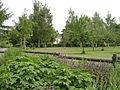 Haus Rodenberg Park.jpg