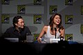 Hawaii Five-0 Panel 2 2010 CC.jpg