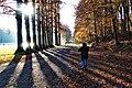 Herbst im Park - Blätter, Bäume, Seeufer und Wege im Wandel der Jahreszeiten. (16).jpg