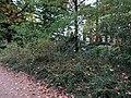 Hermann-Seidel-Park (2621).jpg