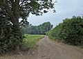 High Lane, bridleway - geograph.org.uk - 206734.jpg
