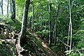 Hintere Wasserfallen Pt 1013 - panoramio.jpg