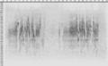 Hippolais polyglotta song spectrogram.png