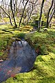 Hogon-in Kyoto Japan06s3.jpg