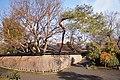 Hogon-in Kyoto Japan10o.jpg