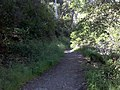 Holly Jim Trail - panoramio (4).jpg