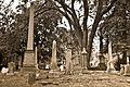 Hollywood Cemetery-9409.jpg