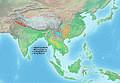 Hominidae miocén Asie.jpg