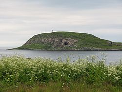 Hornøya.jpg