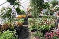Howe's Farm and Garden - panoramio (2).jpg