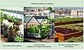 Huertos urbanos en edificios.jpg