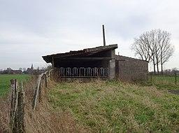 Schlenk in Bedburg-Hau