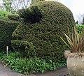 Human head topiary - England - Stierch.jpg