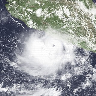Hurricane Odile (1984) Category 2 Pacific hurricane in 1984