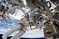ISS-55 EVA-1 (d) Drew Feustel.jpg