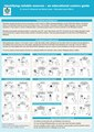 Identifying Reliable Sources - an Educational Comics Guide - Poster.pdf