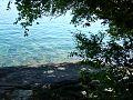 Ilha grande water.jpg