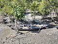 Images from Bali Island Sunderbans IMG 20171112 101344.jpg