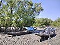Images from Bali Island Sunderbans IMG 20171112 103015.jpg