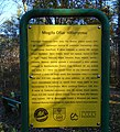 Information board about the German Arbeitslager in Miłoszyce1.jpg